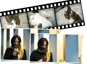 プリント、ポジフィルムにも対応します。